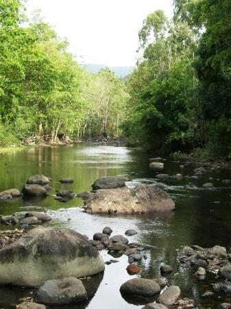 Black River Gorges National Park Mauritius
